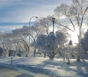 Zimy północ Obrazy Royalty Free