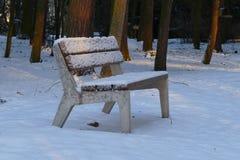 Zimy Parkowa ławka Zdjęcia Royalty Free