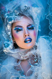 Zimy piękna kobieta Bożenarodzeniowy dziewczyny Makeup Fotografia Royalty Free