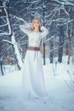 Zimy piękna kobieta Piękna moda modela dziewczyna z śnieżną fryzurą i makeup w zima lasowym Świątecznym manicurze i makeup obrazy royalty free