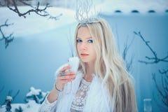 Zimy piękna kobieta Piękna moda modela dziewczyna z szklaną kolby fryzurą, makijażem w zimy laboratorium i Świąteczny makeup i obraz stock
