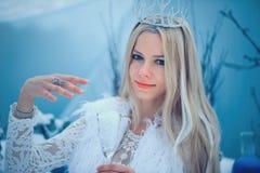 Zimy piękna kobieta Piękna moda modela dziewczyna z szklaną kolby fryzurą, makijażem w zimy laboratorium i Świąteczny makeup i obraz royalty free