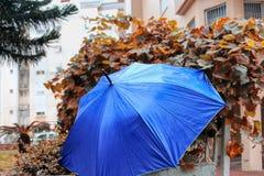 Zimy pogoda w Izrael Parasol z raindrops na ogrodzeniu po deszczu, obraz stock