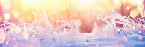 Zimy Pogodny tło z Bokeh skutkami fotografia royalty free