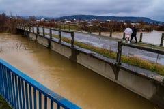 Zimy powódź w Transcarpathian regionie Ukraina Zdjęcie Royalty Free