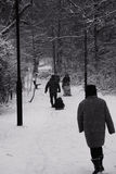 Zimy przespacerowanie w ciężkim spadku śnieg zdjęcie royalty free