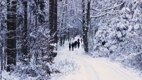 Zimy przewietrzenie Obraz Royalty Free