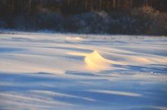 Zimy przybycie Fotografia Stock