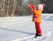 Zimy radość Obraz Stock
