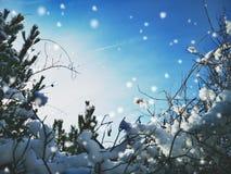 Zimy rama lub tło obraz stock