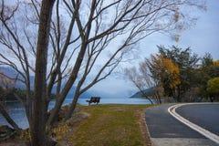 Zimy Ranek jezioro Wakatipu Zdjęcia Stock