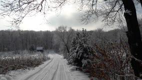 zimy Rosja las Obrazy Royalty Free