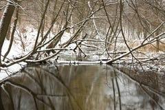 Zimy rzeka Obraz Royalty Free