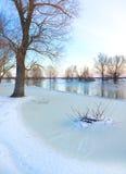 Zimy rzeka Fotografia Royalty Free