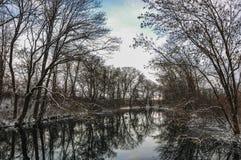 Zimy rzeka Zdjęcia Royalty Free