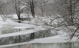 Zimy rzeka Obraz Stock