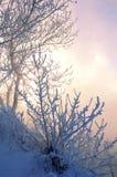 Zimy rzeka Lód i mgła Zimy rzeka Lód i mgła Zdjęcie Royalty Free