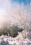 Zimy rzeka Lód i mgła Zimy rzeka Lód i mgła Zdjęcia Stock