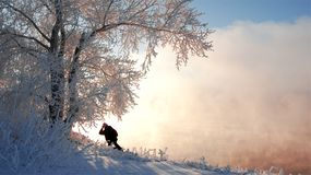 Zimy rzeka Lód i mgła Zimy rzeka Lód i mgła Obraz Stock