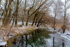 Zimy rzeka wśród drzew Zdjęcie Stock