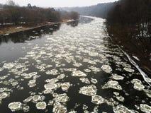 Zimy rzeka z spławowymi lodowymi floes Fotografia Royalty Free