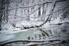 Zimy rzeki odbicie Zdjęcia Royalty Free