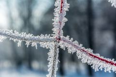 Zimy ` s bajka obrazy royalty free
