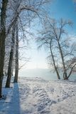 Zimy ` s bajka obrazy stock