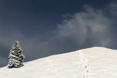 Zimy scena, krajobraz Fotografia Stock