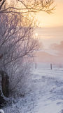 Zimy scena na Holenderskim dajku Zdjęcia Stock