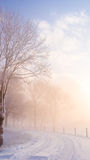 Zimy scena na Holenderskim dajku Zdjęcia Royalty Free