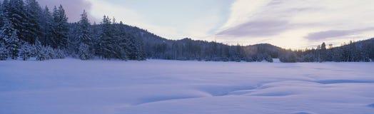 Zimy scena, Nevada Zdjęcie Stock