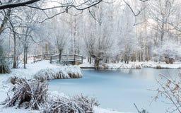 Zimy scena przy ogródem botanicznym fotografia stock