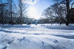 Zimy scena w Sapporo, hokkaido, Japonia obraz royalty free