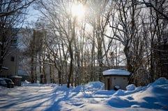 Zimy scena w Sapporo, hokkaido, Japonia obrazy royalty free