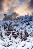 Zimy sceneria Po śniegu Obraz Stock
