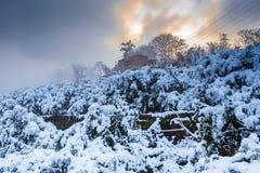 Zimy sceneria Po śniegu Zdjęcie Royalty Free