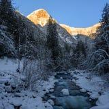 Zimy sceneria z śniegiem zakrywającym kołysa w rzece w Silver Lake prowincjonału parku zdjęcie stock