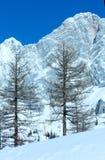 Zimy skała z świeżym spadać śniegiem na wierzchołku. Zdjęcie Royalty Free