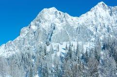 Zimy skała z świeżym spadać śniegiem na wierzchołku. Obraz Stock