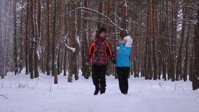 Zimy sosny śnieżnego parka i śmiechu w miłość mężczyźnie i kobieta spacerze przez Związki dorosli zbiory