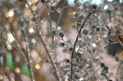 Zimy tło z lód dekorować gałąź zdjęcia royalty free