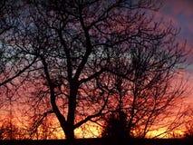 Zimy tęcza Fotografia Royalty Free