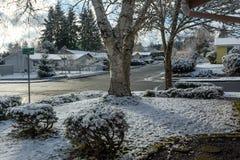 Zimy ulica w obszarze zamieszkałym Obraz Stock