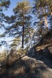 Zimy wąska ścieżka w górach Obrazy Stock