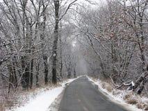 Zimy wiejska droga Fotografia Stock