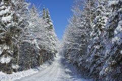 Zimy wiejska droga Obrazy Royalty Free