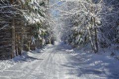 Zimy wiejska droga Fotografia Royalty Free