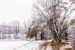 Zimy wsi droga Obrazy Royalty Free