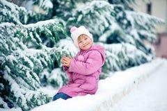 Zimy zabawa fotografia royalty free